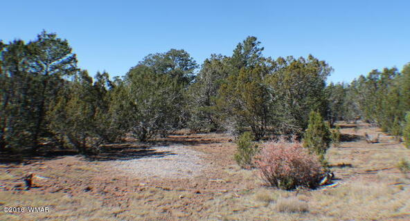 8 Acres Off Of Acr N. 3114, Vernon, AZ 85940 Photo 8