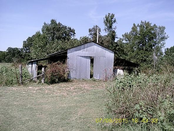 432 Cr 3355, Clarksville, AR 72830 Photo 21
