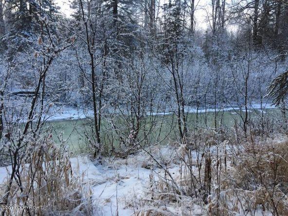 52738 S. Snowy Owl Cir., Willow, AK 99688 Photo 34