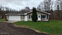 Home for sale: 6255 Brunswick Rd., Holton, MI 49425