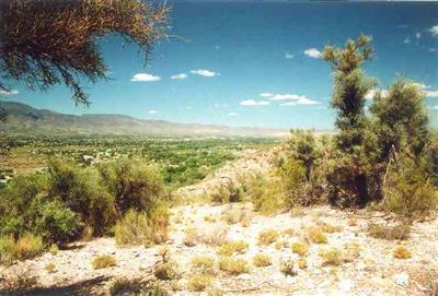 2450 S. Tissaw Rd., Cornville, AZ 86325 Photo 7
