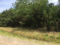 Home for sale: Lot 99 County Rd. 1788, Ben Lomond, AR 72847
