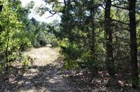 Home for sale: Tbd County Rd. 1560, Chico, TX 76431