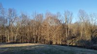 Home for sale: 2 Hunting Camp - Lot #2, Fairview, TN 37062