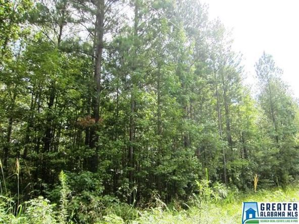 4.17 Acres Thomas Ln., Ashland, AL 36251 Photo 3