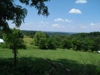 Home for sale: Lot 24 Olivet Mountain Rd., Greeneville, TN 37743