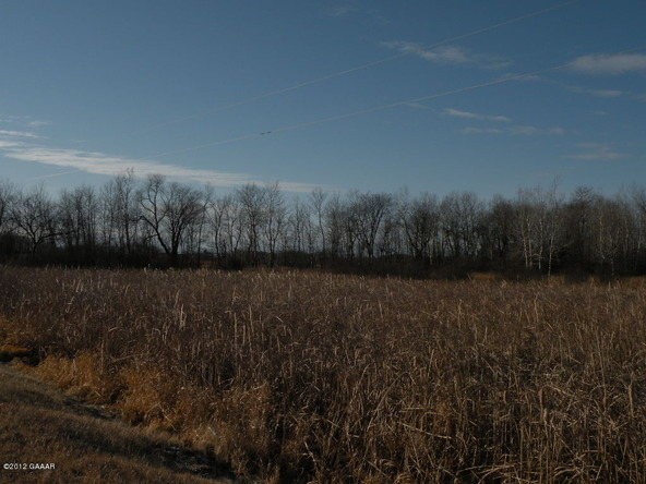County Rd. 138, Parkers Prairie, MN 56361 Photo 15