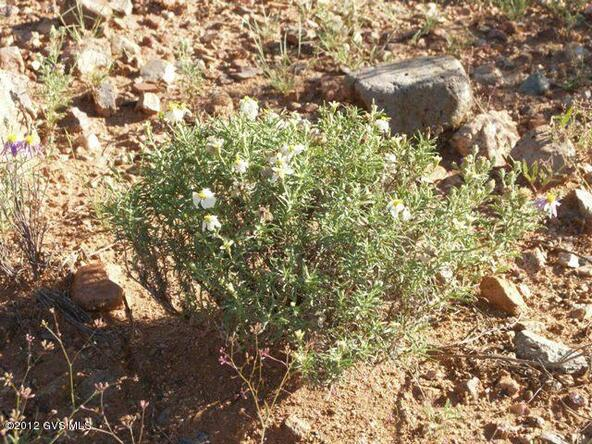 677 E. Canyon Rock Rd., Green Valley, AZ 85614 Photo 33