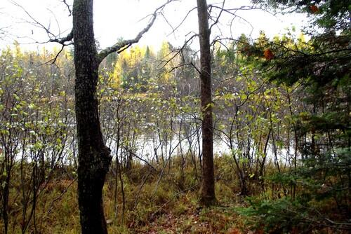 Lot 2 - 5813 Hwy. 70, Eagle River, WI 54521 Photo 4