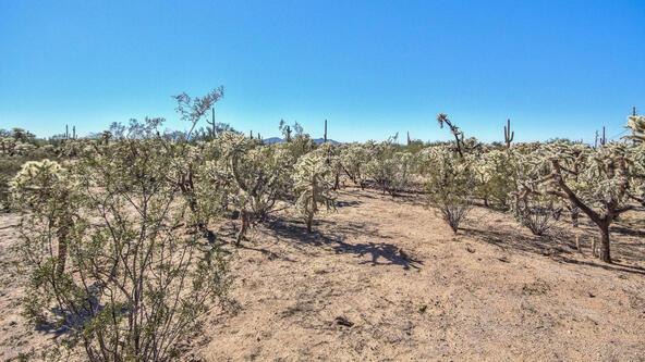 27361 E. Quartzite Dr., Florence, AZ 85132 Photo 19