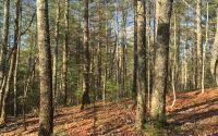 Home for sale: Tract Cooper Ridge Rd., Suches, GA 30572