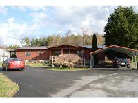 Home for sale: 107 Billy Joe Dr., Hampton, TN 37658