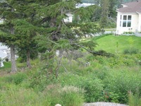 Home for sale: L15 B6 Manorwood Pointe Cir., Anchorage, AK 99516