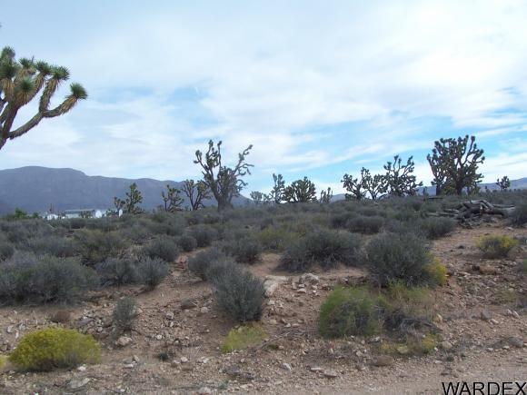 26712 N. Bullhead Rd., Meadview, AZ 86444 Photo 7