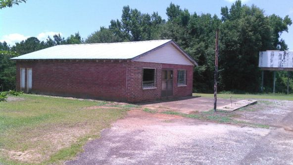 2269 Hwy. 431, Abbeville, AL 36310 Photo 2
