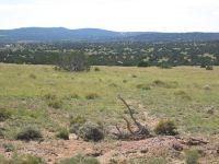 Home for sale: Lot 174 Lakeview Ranch Unit Iv, Concho, AZ 85924