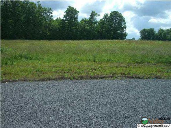 9 County Rd. 743, Scottsboro, AL 35768 Photo 2