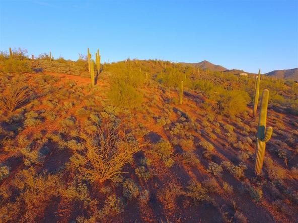 41000 N. 7th St., Phoenix, AZ 85086 Photo 18