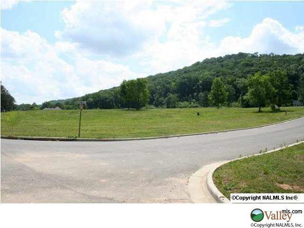 C Summerhill Dr., Guntersville, AL 35976 Photo 4