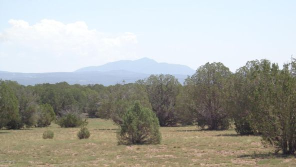 261 Juniperwood Ranch Lot 261, Ash Fork, AZ 86320 Photo 1