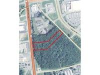 Home for sale: 0000 Washington Hwy., Hanover, VA 23059