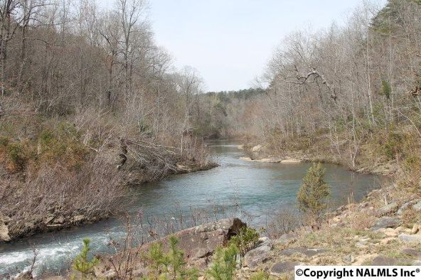 1020 County Rd. 628, Mentone, AL 35984 Photo 23
