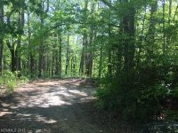 Home for sale: 21 Acres Nc Hwy. 9 None, Black Mountain, NC 28711