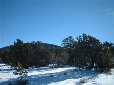 7382 N. Apache Avenue, Williams, AZ 86046 Photo 5