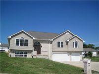 Home for sale: 117 Nighthawk Ln., Hannibal, MO 63401