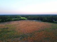 """Home for sale: Tract """"A"""" Newell, Byron, GA 31008"""
