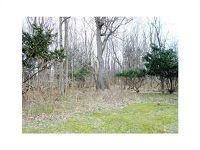 Home for sale: Scottsville Mumford Rd., Scottsville, NY 14546