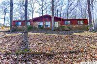 Home for sale: 3919 S. Chapel Hill Rd. S.W., Decatur, AL 35603