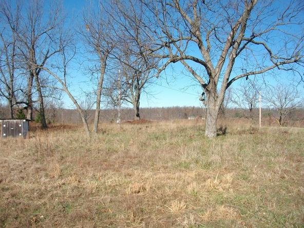 1059 Pleasant Run Rd., Mammoth Spring, AR 72554 Photo 22