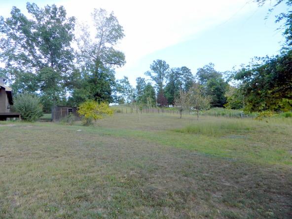 526 County Rd. 139, Bryant, AL 35958 Photo 130