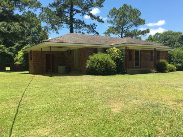 4668 Old Chipley Rd., Slocomb, AL 36375 Photo 5