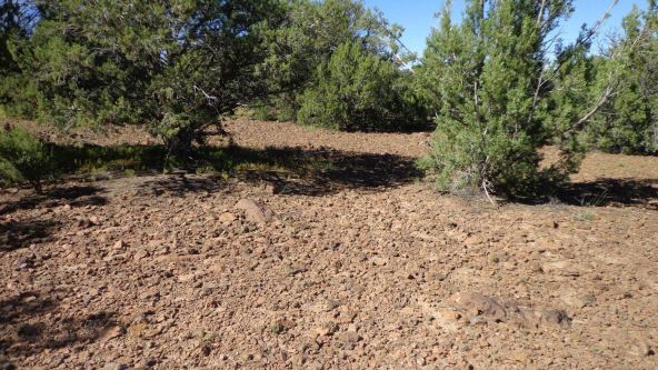 514 Westwood Ranch Lot 514, Seligman, AZ 86337 Photo 7