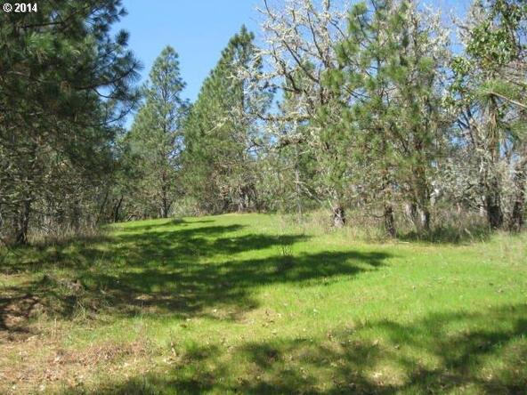 433 N.E. Spring View Dr., Myrtle Creek, OR 97457 Photo 16
