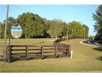 Home for sale: 0000 Chesson Hill Dr., Fitzpatrick, AL 36029