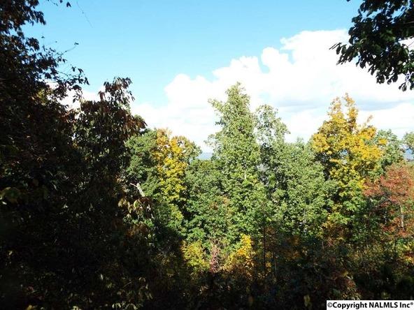 15 S. County Rd. 89, Mentone, AL 35984 Photo 24