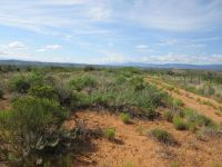 Home for sale: 9225 E. Rolling Stone Ln., Cornville, AZ 86325