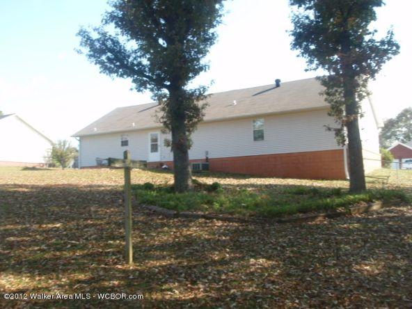 151 Pine Ave., Winfield, AL 35594 Photo 3
