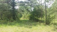 Home for sale: 00 Horse Stomp Rd., Poplarville, MS 39470