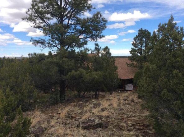 3398 County 4 Rd., Vernon, AZ 85940 Photo 30
