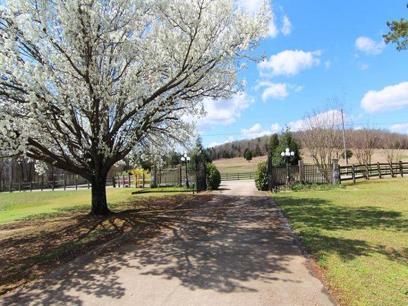 3510 Colburn Mill Rd., Littleville, AL 35653 Photo 30