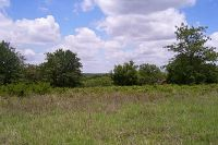 Home for sale: Tbd County Rd. 420, Comanche, TX 76442