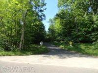 Home for sale: 9380 S. Benjamin Dr., Newaygo, MI 49337