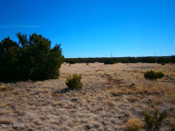 8451 Yucca Pl., Show Low, AZ 85901 Photo 3