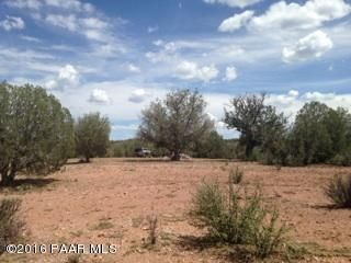 171 Friendship/Conwayden, Ash Fork, AZ 86320 Photo 2
