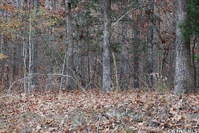 00 Roby Rd., Jacks Creek, TN 38347 Photo 8