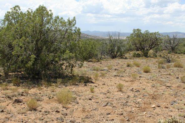 3 Stockman, Ash Fork, AZ 86320 Photo 11